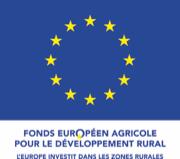 Logo Fond Européen agricole pour le développement rural