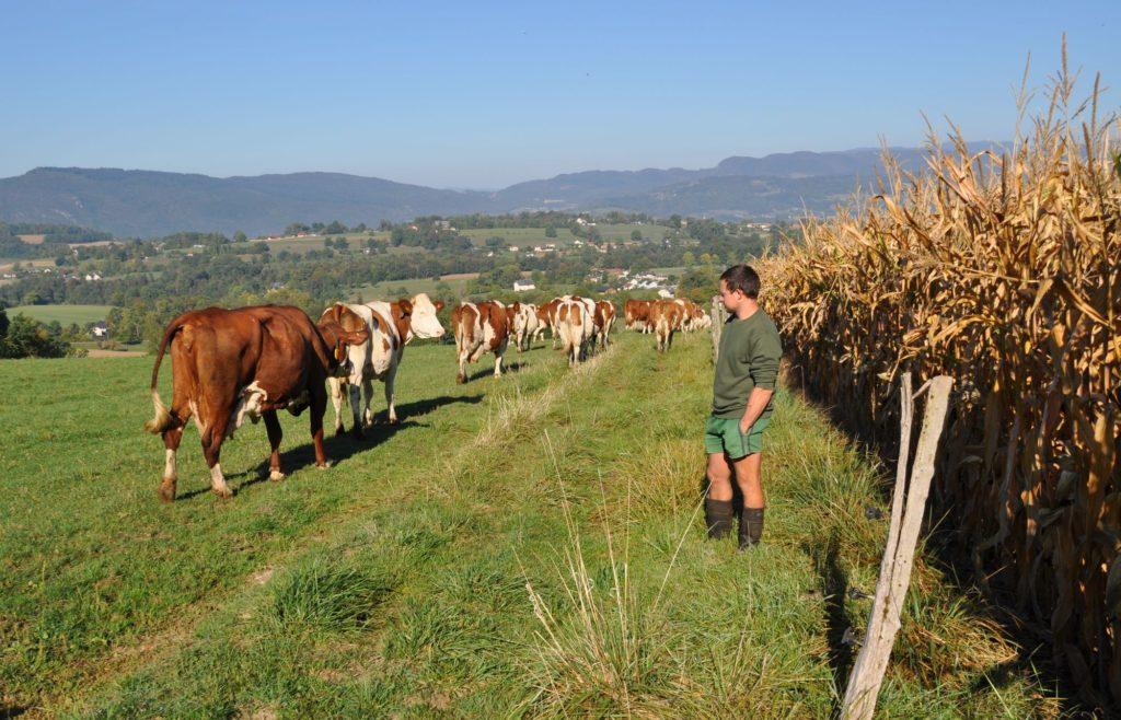 Son métier d'agriculteur est pour lui avant tout une vocation et une histoire de famille.